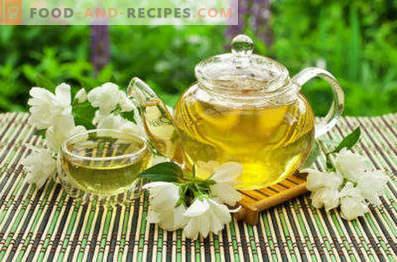 Zaļā tēja ar jasmīnu: laba un kaitīga
